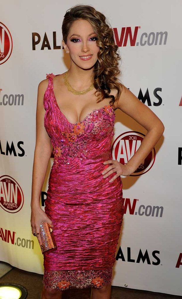 The 2011 AVN Awards