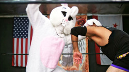Allen Haff: Professional Wrestler
