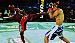 Bellator 55 Highlights