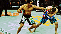 Bellator 82 Preview