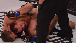Bellator Season 11 - Best Submissions