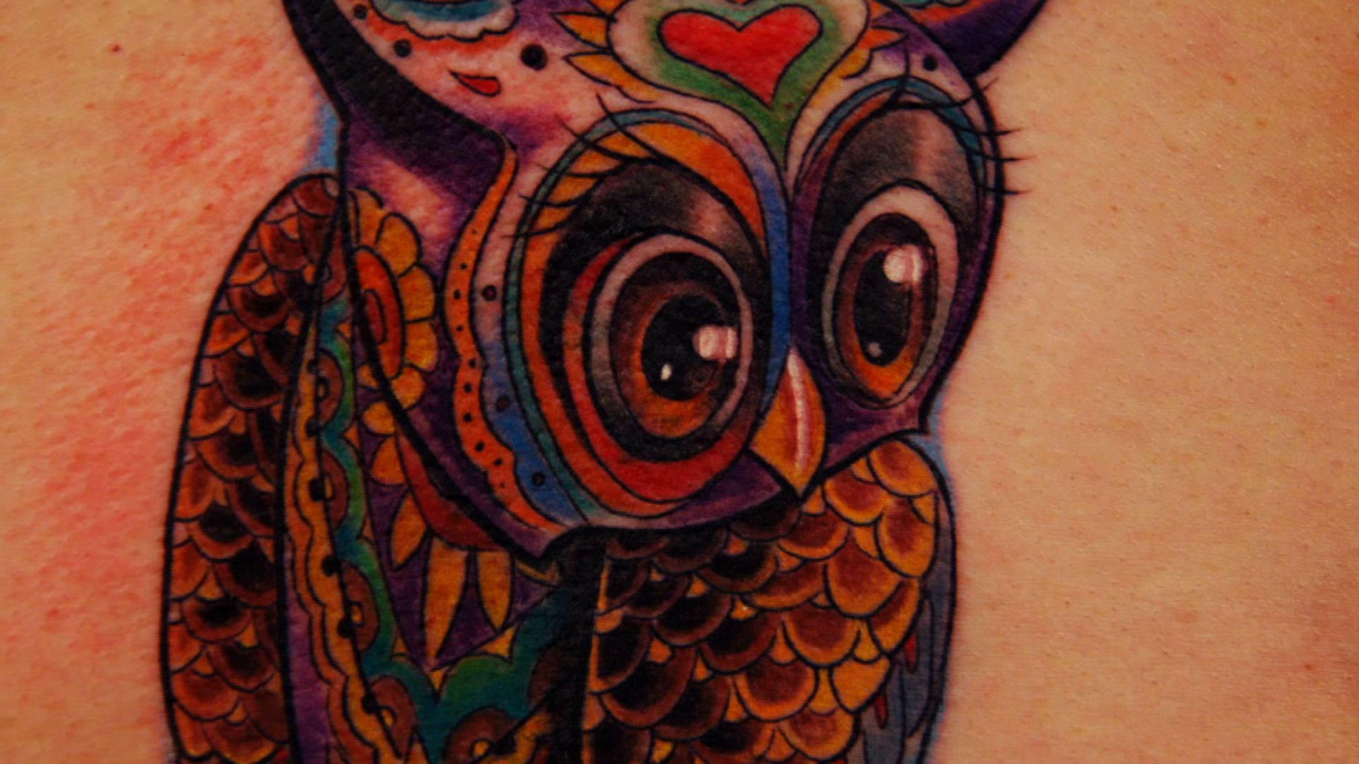 Wise as an owl tattoo nightmares video clip for Is tattoo nightmares still on